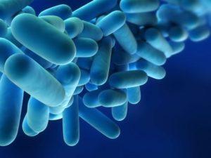 legionella-bacteria-legionella-risk-assessments(2)